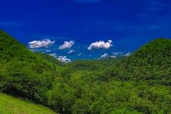 Heuvelig boslandschap in het Nationale Park van Kaeng Krachan royalty-vrije stock foto