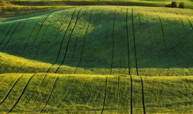 Heuvelig gebied Schilderachtig de lentegebied stock afbeelding