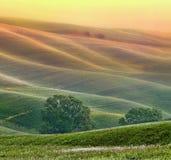 Heuvelig landschap van Toscanië Stock Fotografie