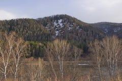 Heuvelige kust van de Siberische rivier stock afbeelding