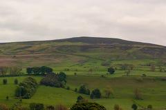 Heuvellandschap royalty-vrije stock afbeelding