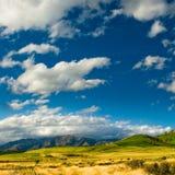 Heuvels bij catlins stock afbeeldingen