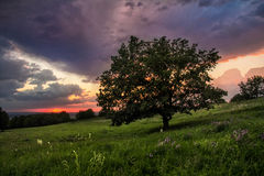 Heuvels bij zonsondergang in de zomer stock fotografie