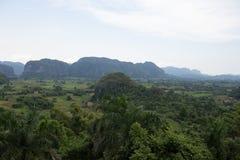 Heuvels en mogotes in Cuba Stock Afbeeldingen