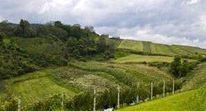 Heuvels en weiden Stock Foto's