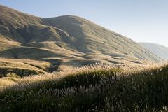 Heuvels en weiden binnen de vulkanische caldera van Aso stock foto