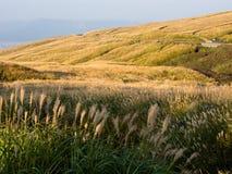 Heuvels en weiden binnen de vulkanische caldera van Aso stock afbeelding