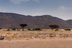 Heuvels met lavadagzomende aardlagen in de woestijn van Saudi-Arabië royalty-vrije stock foto