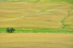 Heuvels in Toscanië, Italië Stock Afbeelding