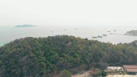 Heuvels van de de menings de groene bosbouw van het vogeloog die door tropische zon worden aangestoken stock footage