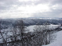 Heuvels van Geilo Stock Afbeelding