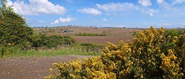 Heuvels van Provincie neer Royalty-vrije Stock Afbeeldingen