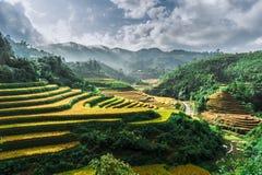 Heuvels van rijstterrassen met bergen en wolken bij achtergrond stock foto's