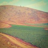 Heuvels van Samaria Stock Foto's