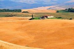 Heuvels van Toscanië Stock Afbeelding