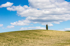 Heuvels van Toscanië, Italië royalty-vrije stock foto