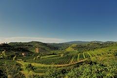 Heuvels van Venco (slovena) stock afbeeldingen