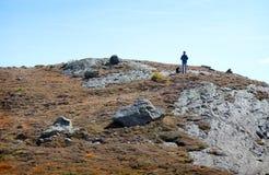 Heuvels van Zwitserland Royalty-vrije Stock Foto's