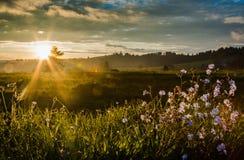 Heuvels in zonsondergang royalty-vrije stock afbeeldingen