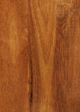 Hevea wood texture Royalty Free Stock Images