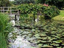 HEVER, KENT/UK - 28-ОЕ ИЮНЯ: Лилии воды на замке Hever в Hever Стоковое фото RF