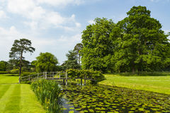 Hever ogródy obrazy royalty free