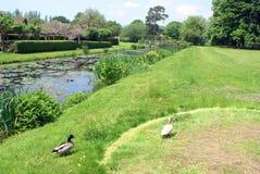 Hever slottträdgård i England arkivfoto