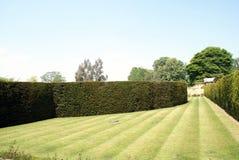 Hever slottträdgårds bana och häckar i England arkivbild