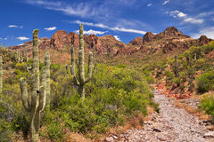 Hewitt Canyon Royalty Free Stock Images
