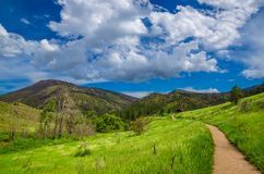 Hewlett Gulch. Hiking the gulch in wild Colorado in Spring Stock Photos