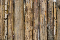Hewn pine logs in the fence,background. Royalty Free Stock Photos