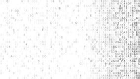 Hex digital data IT concept Stock Image