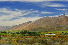 Hex Valley. Wine estates in the Hex Valley,South Africa Royalty Free Stock Photo