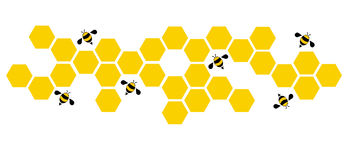 Hexagon bee hive design art and space background vector Stock Photo