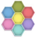 Hexagon flower Stock Photography