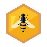 Hexagon-Form-Bienenwabe mit Bienen-Insekt in der Mittelkarikatur-Illustration vektor abbildung