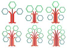 Hexagon frames tree designs Stock Photography