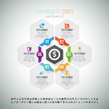 Hexagon Part Infographic Stock Images