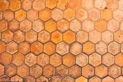 Hexagon paved pathway Stock Photography