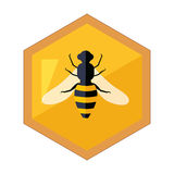 Hexagon Shape Honeycomb With Bee Insect In Center Cartoon Illustration. Cute Colorful Honey Related Vector Sticker Isolated On White Background Stock Image
