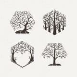 Hexagon trees set. Vector illustration. Pattern geometric figure. Royalty Free Stock Images
