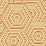 Hexagonal abstract Aboriginal line painting. In  format Stock Photography