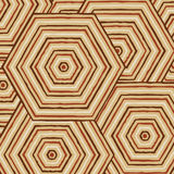 Hexagonal abstract Aboriginal line painting. In  format Stock Photos