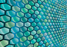 Hexagonal cells background Stock Images