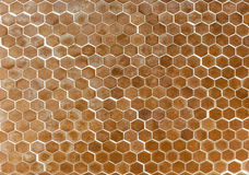 Hexagonal floor tiles royalty free stock photo