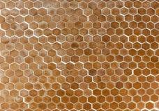 Hexagonal floor tiles Royalty Free Stock Photo