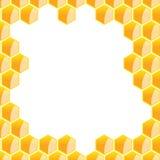 Hexagonal frame Stock Image