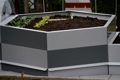 Hexagonal raised bed Stock Photos