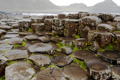 Hexagonal rocks at Giants Causeway, Northern Ireland. The Giants Causeway in Northern Ireland is a world heritage site. This image shows the predominantly Stock Photos