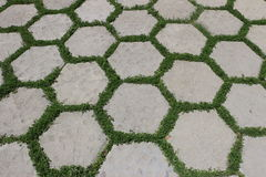 Hexagonal tiles. With green grass between them royalty free stock photography